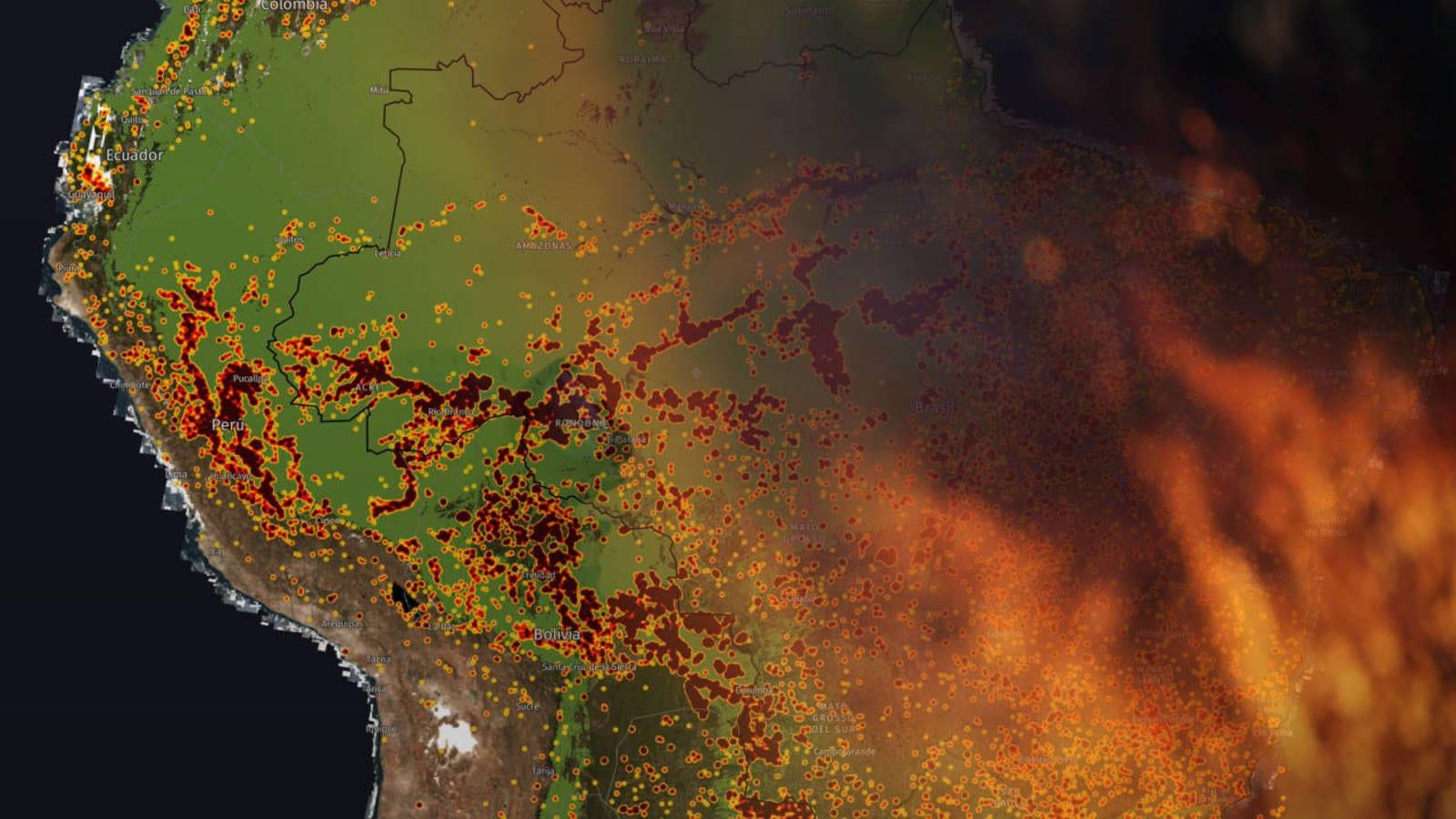 El Dantesco Mapa De Los Incendios Del Amazonas Asi Se Esta