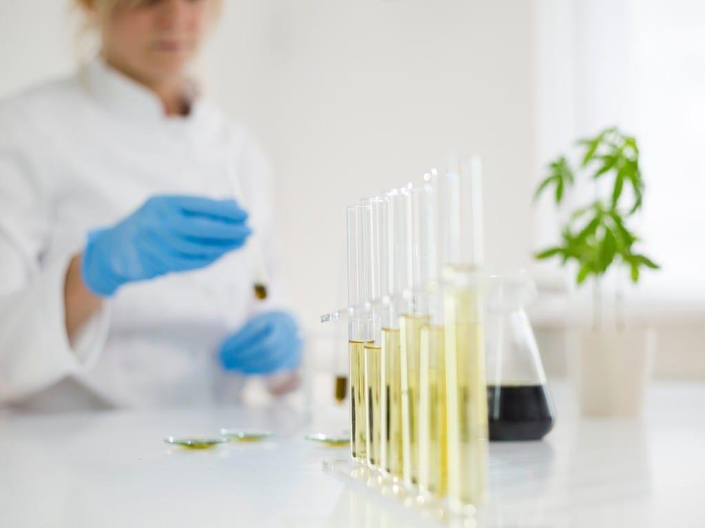 Cannabis laboratory research